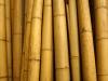 Bamboepalen