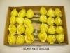 droogbloemen-058