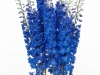 Delphinium Triton Blue