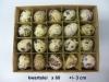 eieren-in-div-soorten-004